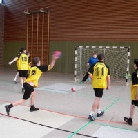 Handb-JuOlympia-Bezirksweb
