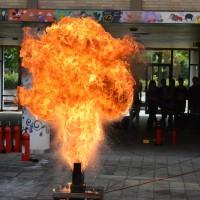 web-150618-Flamme2