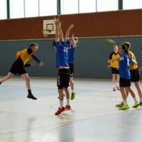 170125 Handball2-web