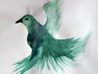 vogel-web