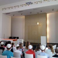 synagode-w