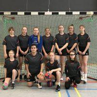 19 Handball1-w